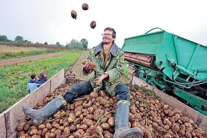 В Тамбовской области определили фермеров, которые получат грантовую поддержку