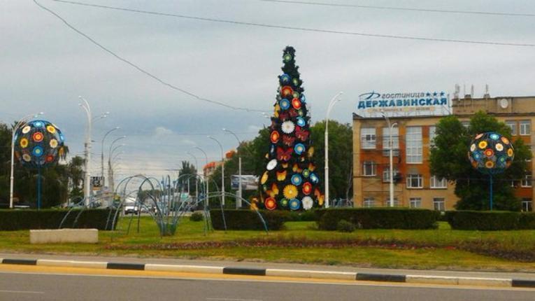 Картинки по запросу летняя ёлка в Тамбове фото