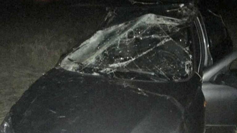 В автомобильной аварии под Тамбовом пострадала девочка