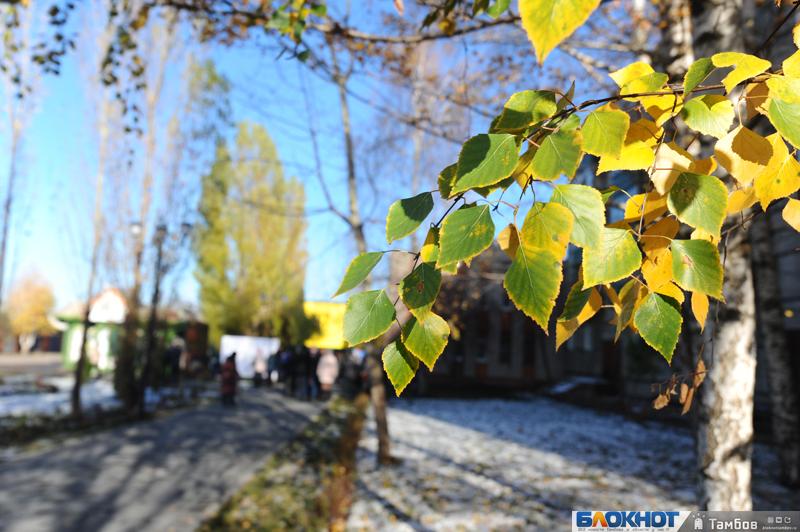 Тамбовская область и по итогам в плане экологии впереди России всей