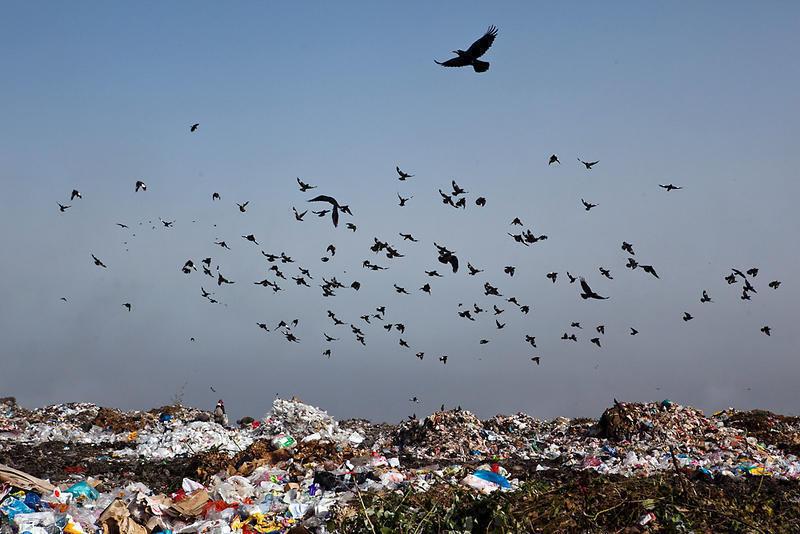 Безопасности полетов тамбовского аэропорта угрожает расположенный по соседству полигон отходов «КомЭк»