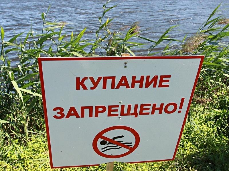 Восемь пляжей Тамбова закрыты для купания
