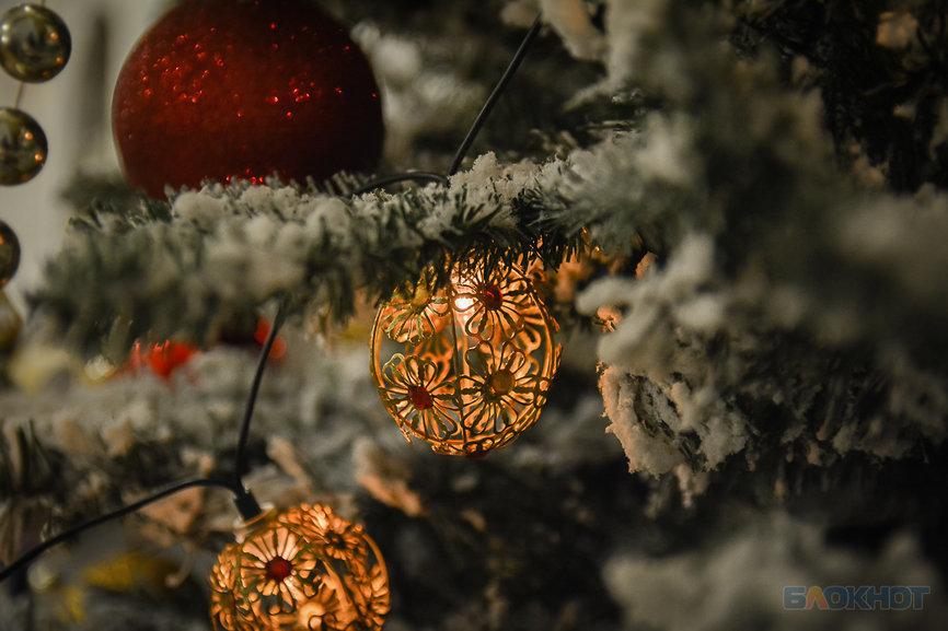 Новогодние елки полны сюрпризов. Порой неприятных. Будьте бдительны!