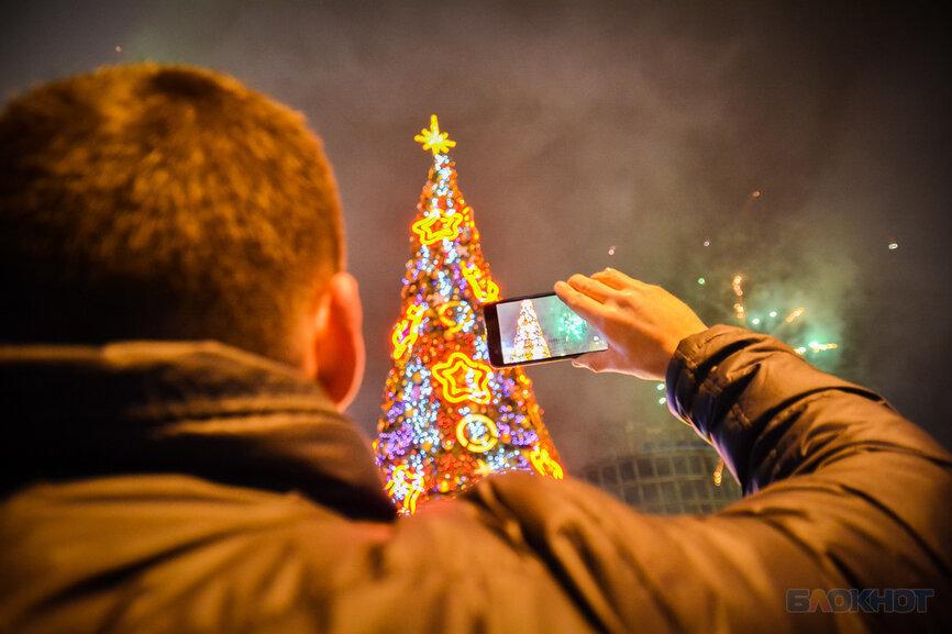 Шестнадцатиметровую новогоднюю ель со светодинамическими эффектами установят у «Кристалла»
