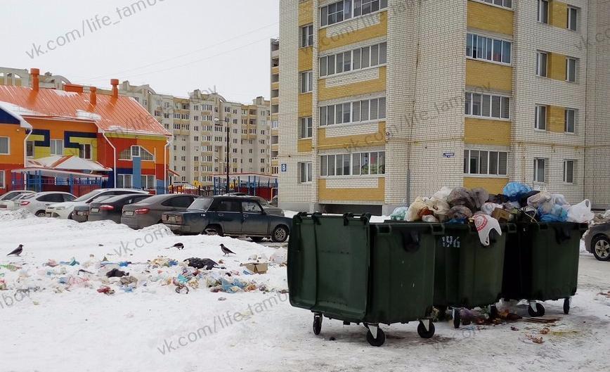 «Две хозяйки на одной кухне»: проблемы контейнерных площадок с двумя мусорными операторами «допекли» тамбовчан