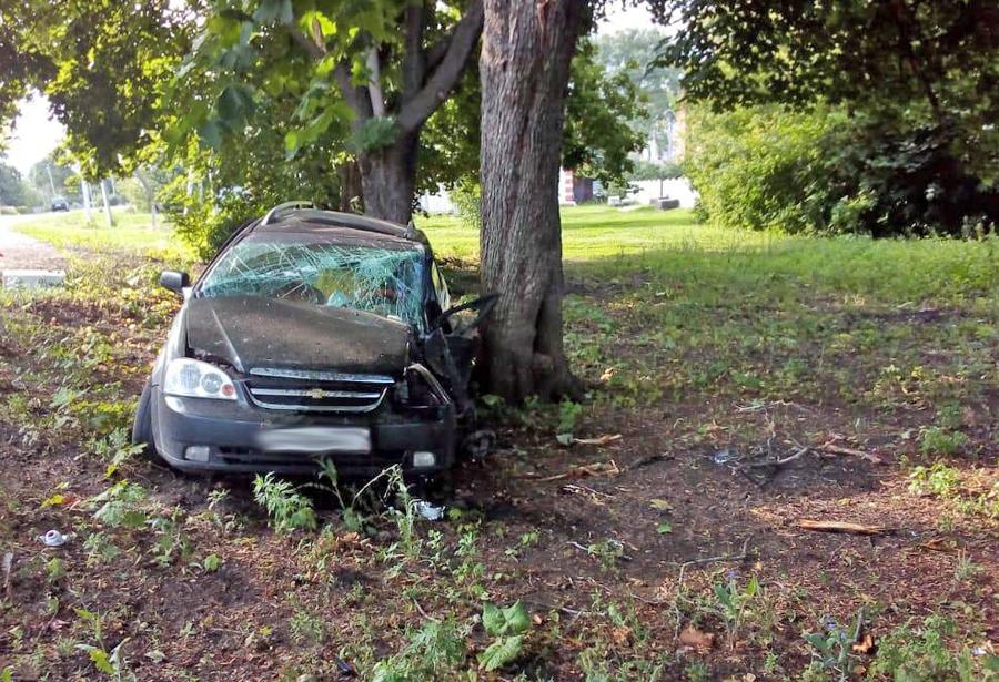 Дерево стало причиной летального ДТП в Тамбовской области
