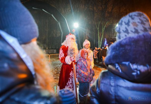 В Тамбове определили места торговли новогодними красавицами