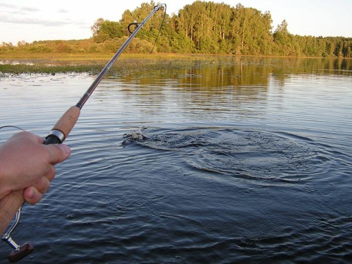 В Сампурском районе утонул рыбак
