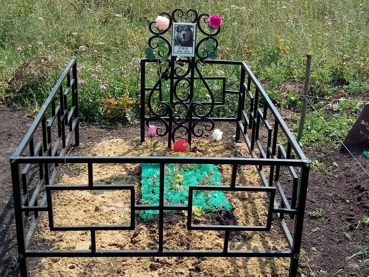 Кладбище по человеческим канонам организовали моршанцы для своих питомцев