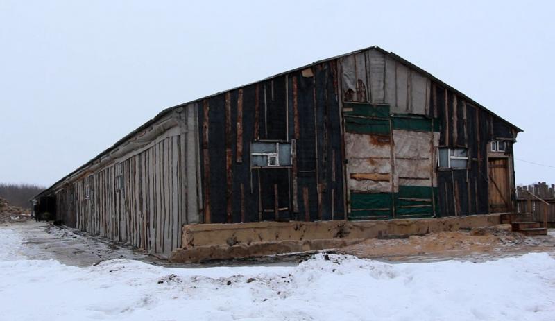 Поджог коровника, как способ мести испробовал житель села Красносвободное